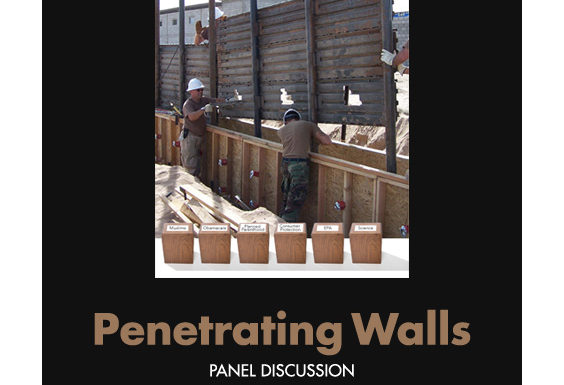 Penetrating Walls - Sandy Bleifer