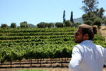Seth Cripe at LOLA vineyards
